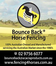 fencing 4 horses