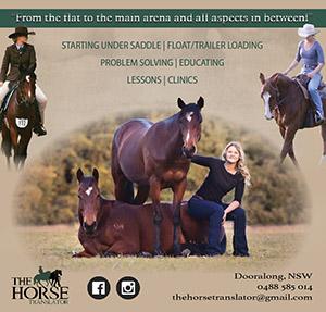 horse translator