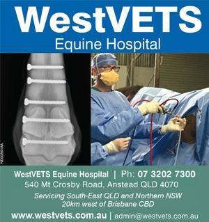 westvets