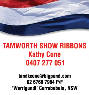tamworth show ribbons