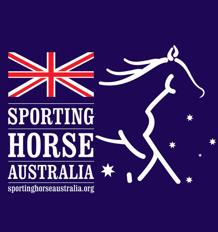 sporting horse